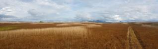 Dry inland region-Vanua Levu near Dreketi 2