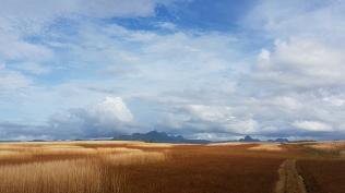 Dry inland region-Vanua Levu near Dreketi 4