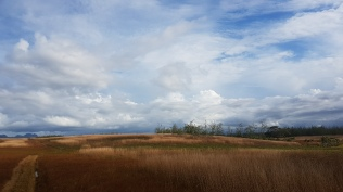 Dry inland region-Vanua Levu near Dreketi 5