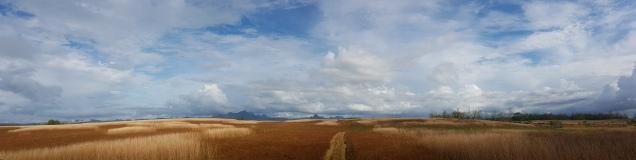 Dry inland region-Vanua Levu near Dreketi 6